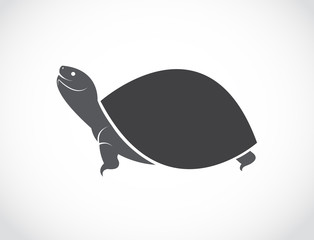 Vector image of an turtle design