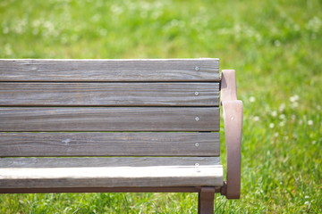 wooden park bench at a park in summer season