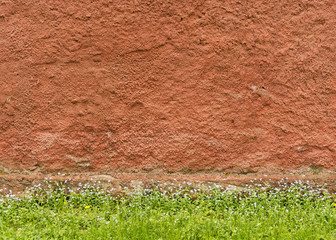 Texture of the red rough plastered wall with grass and flowers