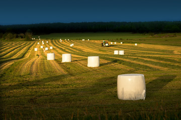 Tractor and hay bales