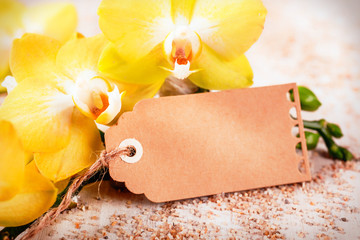 Yellow orchids with a blank gift tag