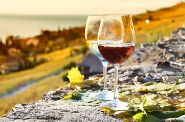 Two wineglasses on the terrace of vineyard in Lavaux, Switzerlan