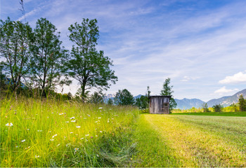 mowed grass at rural tyrol meadow with old wooden hut in spring