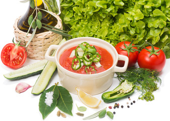 Traditional tomato soup gazpacho