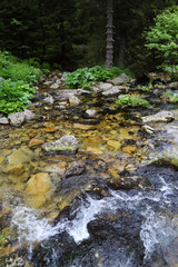 Mountain River in National Park Retezat, Romania, Europe