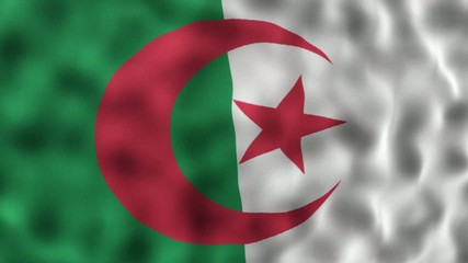 Fahne Flagge Nationalflagge Nationalfahne Algerien