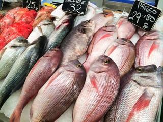 Fische in der Markthalle von Palma de Mallorca