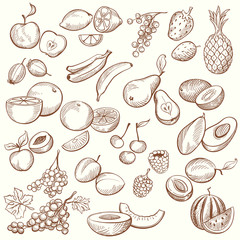 Set of Vintage Sketches Fruits in Freehand Style