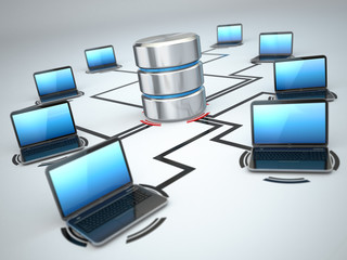 Database storage and laptops. Networking concept