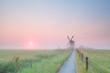 windmill on misty Dutch farmland