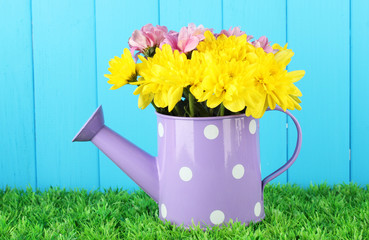 colorful chrysanthemums in violet watering can with white polka
