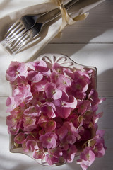 Hydrangeas for the ornament of the table