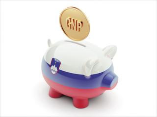 Slovenia GNP Concept. Piggy Concept
