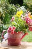 Deko Gießkanne mit Blumen im Garten