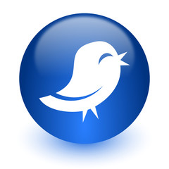 twitter computer icon on white background