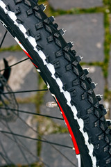 Rubber bicycle tire structure. Detail