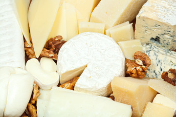assortment of sliced cheeses and walnuts