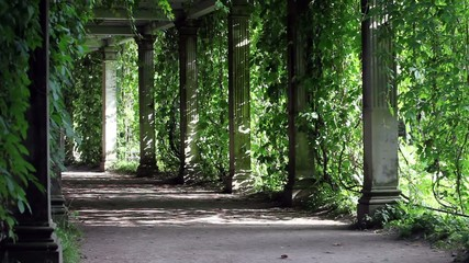 shady walkway with columns
