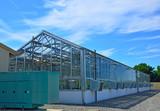 Greenhouse, plants,ecosystem. poster