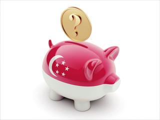 Singapore Question Mark Concept Piggy Concept