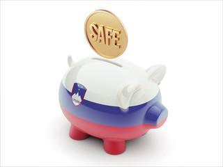 Slovenia Safe Concept Piggy Concept