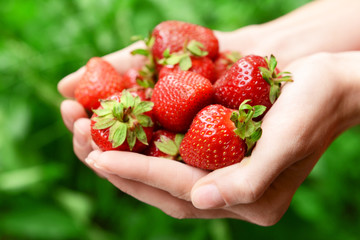 Ripe sweet strawberries in female hands on bright background