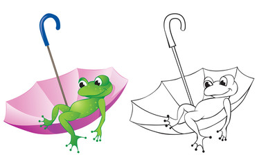 Frog and umbrella
