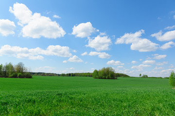 landscape with sky