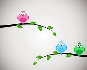 Three birds on branch
