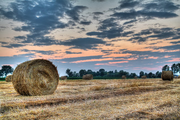hay bale at the sunset