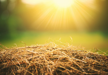 natural summer background. hay and straw in  sunlight
