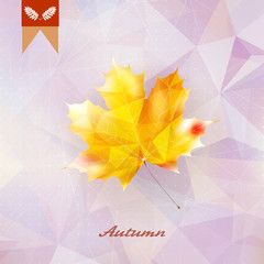 Autumnal leaf background made of triangles.