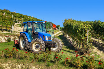 Tractor among vineyards.