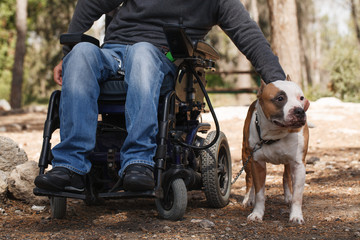 Man in a wheelchair with his faithful dog.