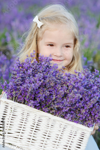 toddler girl with lavender