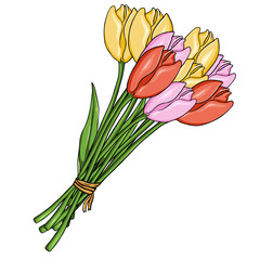 Vector Cartoon Bouquet of Color Tulips