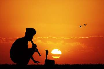 snake charmer at sunset