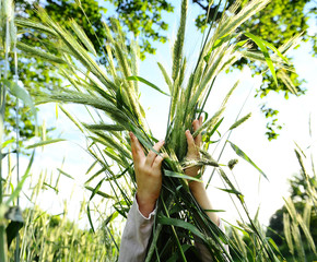 Girl tenderly embraces sheaf of wheat