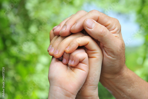 canvas print picture father's hand holds a palm of his wife and daughter