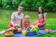 Happy family of four picnicking in the park on summer day - 66573301