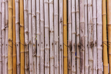 bamboo fence at natural background