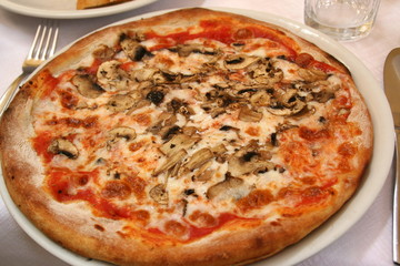 Pizza mit Thunfisch und Pilzen