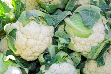 Fresh raw cauliflowers © Arena Photo UK