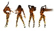 Set of women's silhouettes in leopard print
