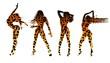 Set of women's silhouettes in leopard print