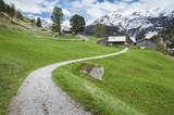 Hiking path From Furi to Zermatt, Switzerland. poster