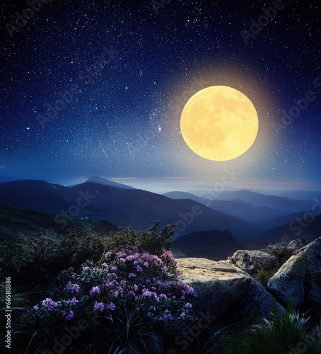 Full moon in the mountains - 66580386