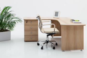 wood desk and palm