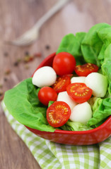 Mozzarella and cherry tomato salad