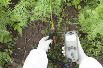 Measuring radiation levels of vegetable